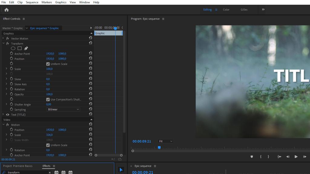 Transform Effect Premiere Pro